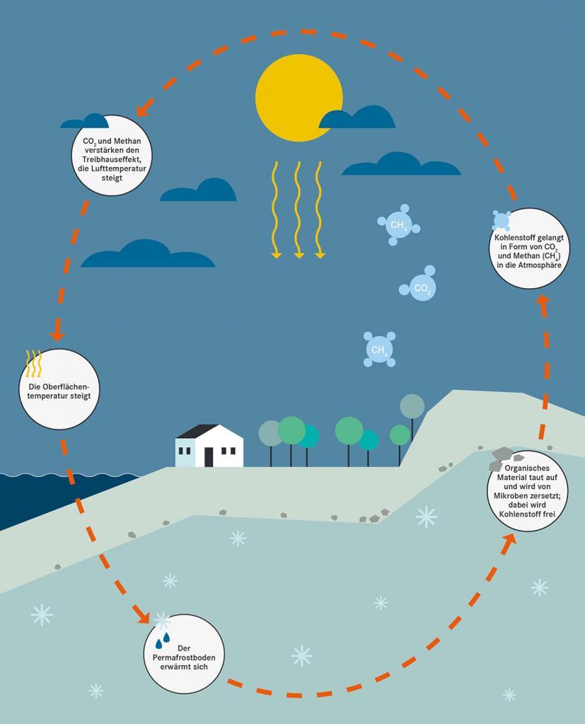 Der Permafrostkreislauf