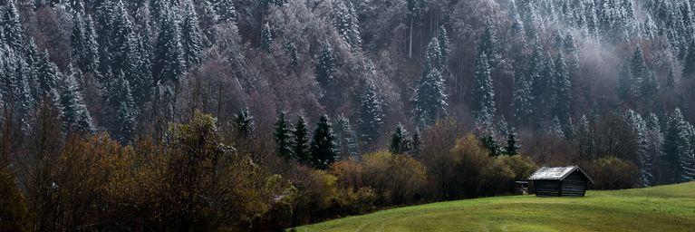Massiver Temperatursturz senkt Schneefallgrenze
