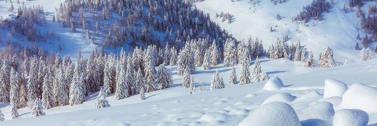 Schnee-Nachschub reißt nicht ab