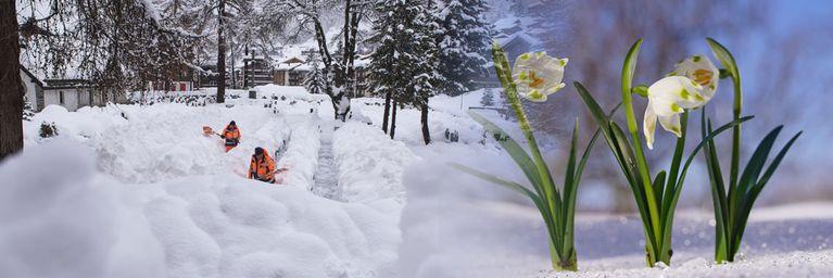 Vorfrühling! Spanische Warmluft kommt!