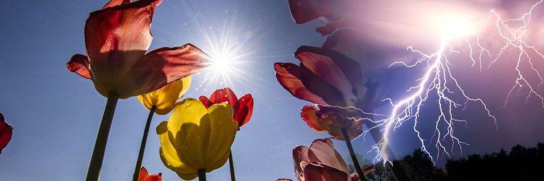 Gewitter kommen! April-Sommer endet mit Knalleffekt