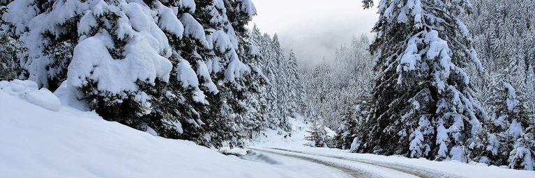 Schnee ohne Ende im Nordstau