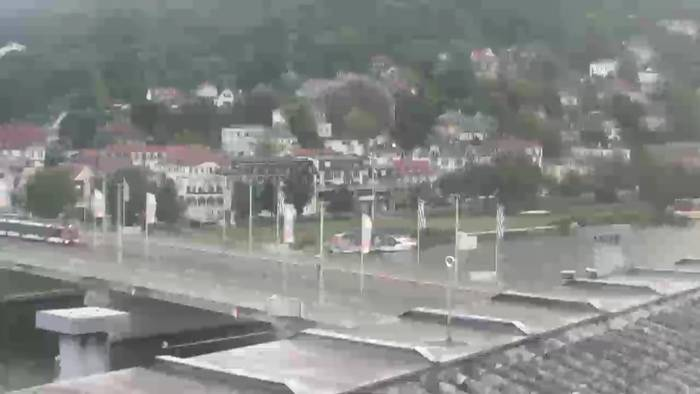 HD Live Webcam Heidelberg - Neckarwiese - Hotel Panorama