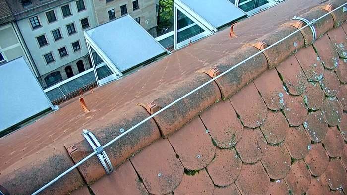 HD Live Webcam Passau - Donaulände - Hotel König