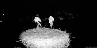 Webcams Deutschland Karte.Hd Live Webcams Das Wetter Live In Hd Erleben Wetter Com