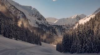Winter weit und breit