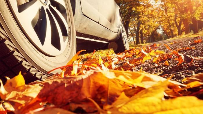 Die Tücken im Straßenverkehr im Herbst