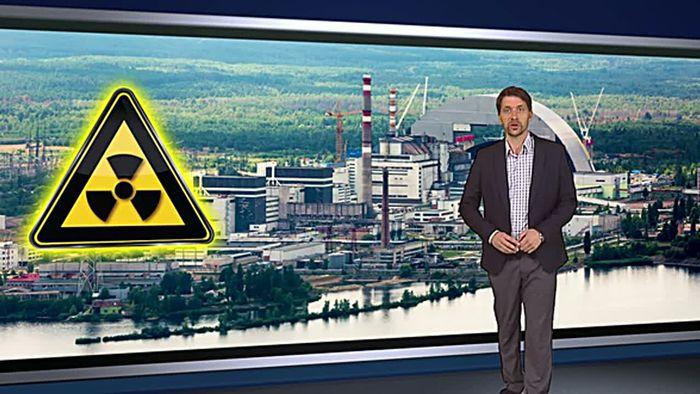30 Jahre nach Tschernobyl: Wildschweine und Pilze strahlen weiter