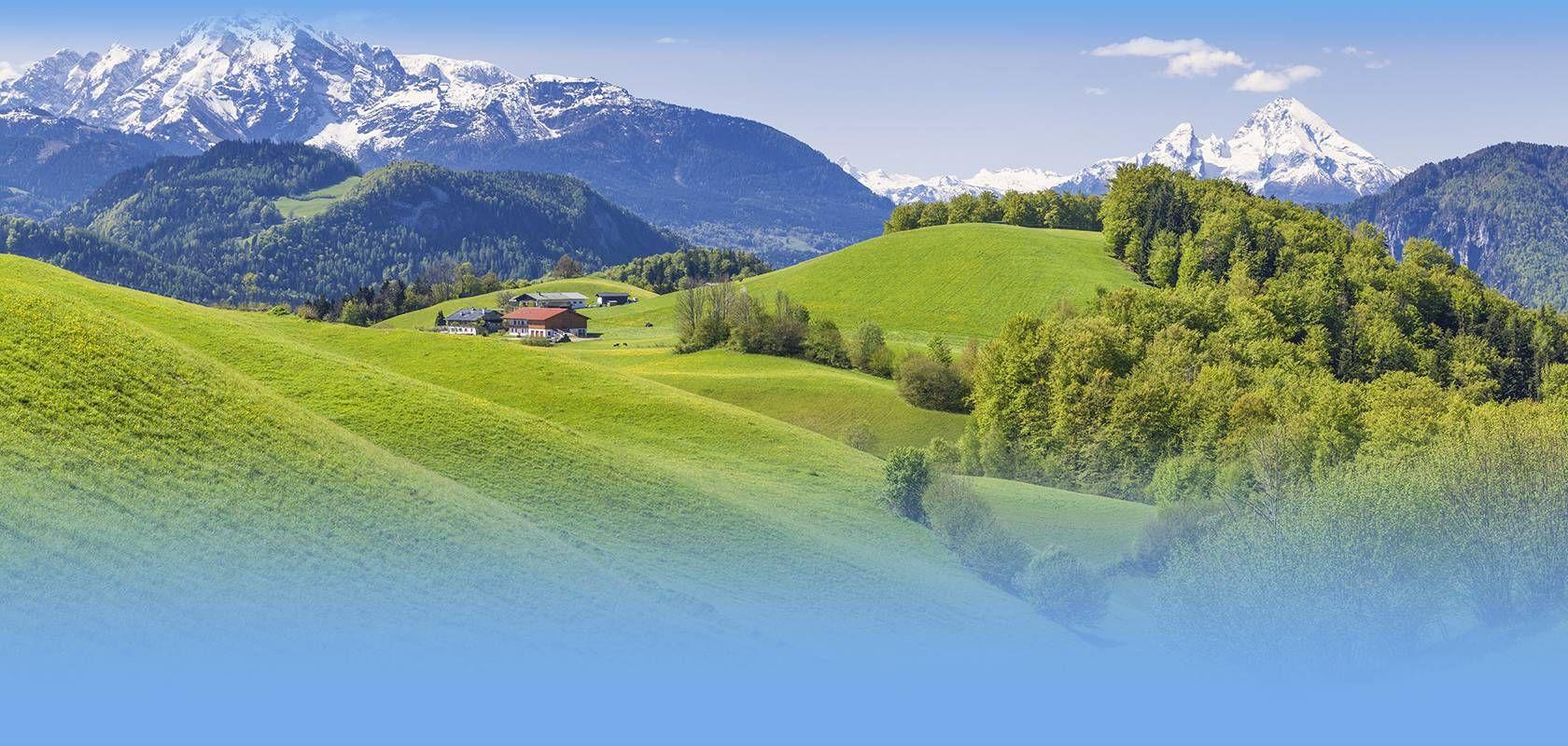 Wetter Bayerischer Wald