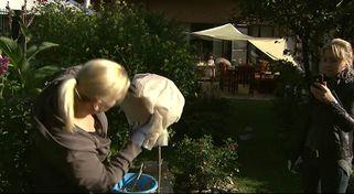 So machen Sie Pflanzen und Garten winterfest - Videos   wetter.com