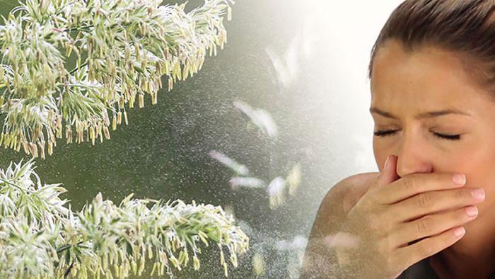 Was tun bei Pollenallergie?