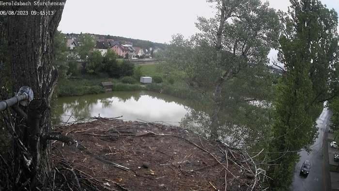 HD Live Webcam El Arenal - Strand - Mallorca