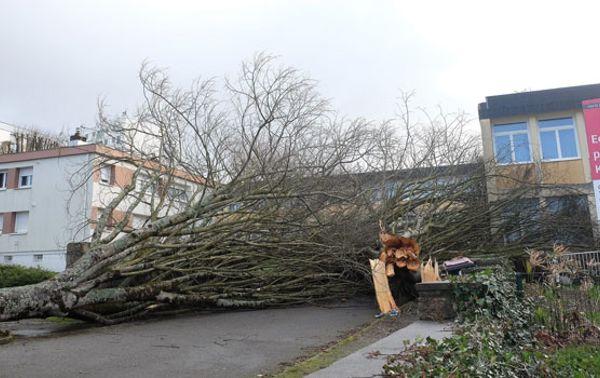 Sturm Zeus Frankreich