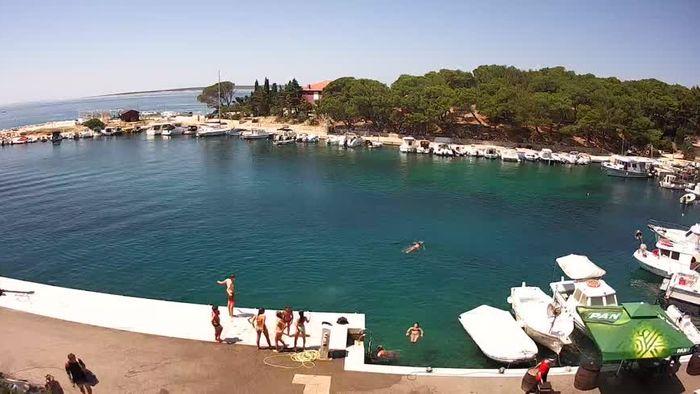 HD Live Webcam Mandre - Insel Pag - Marina