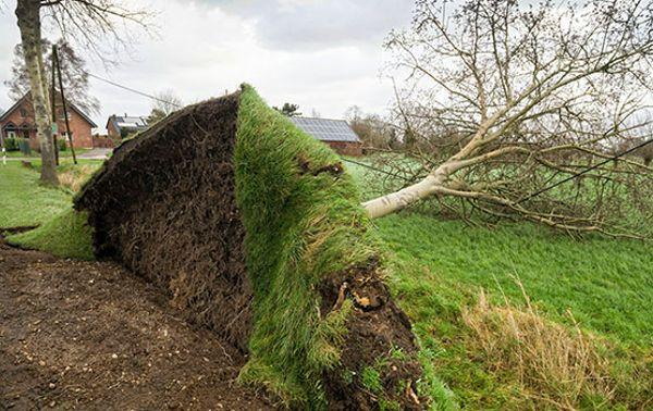 Orkan FRIEDERIKE wütet in Deutschland
