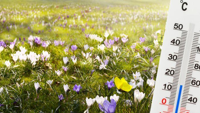 16-Tage-Trend: Vorfrühlingshaft Richtung Monatswechsel