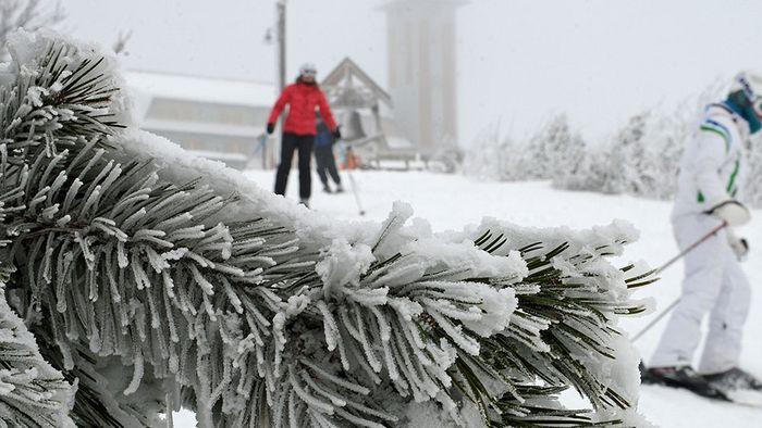 16-Tage-Trend: Februar startet kühler