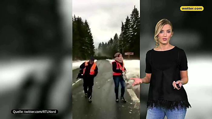 Tödliche Gefahr: Richtiges Verhalten im Orkan