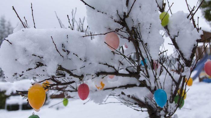 März-Prognose: Großer Frühlingsdurchbruch eher unwahrscheinlich
