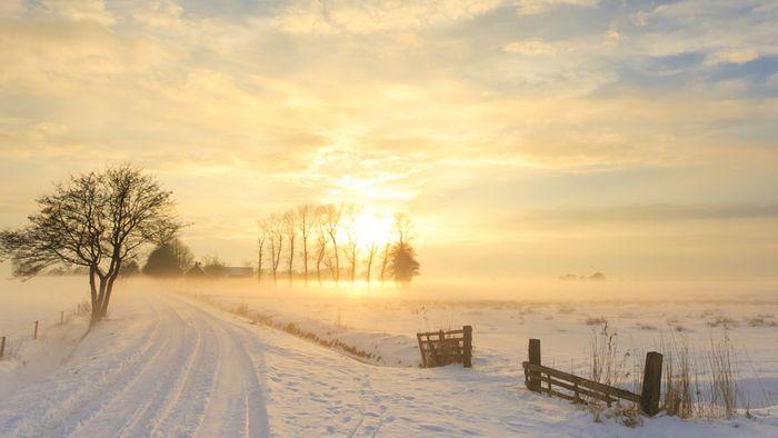 16-Tage-Trend: Kein Ende der winterlichen Phase in Sicht