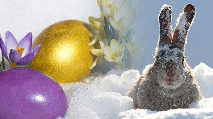 Ostertrend 2018: Weihnachten im Klee, Ostern im Schnee?