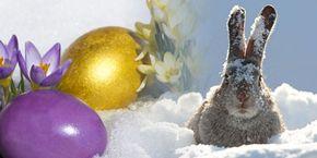 weihnachten 2018 schnee Ostertrend 2018: Weihnachten im Klee, Ostern im Schnee?   Videos  weihnachten 2018 schnee