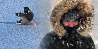 Kais Kolumne: Erneute Kälteklatsche Ende März?