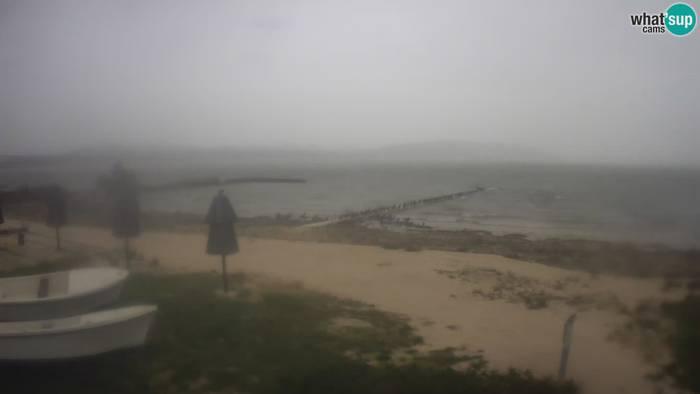 HD Live Webcam Vraner See - Naturpark Vransko Jezero - Camp