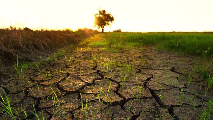 Sonne, Hitze, Dürre: So extrem war der Rekord-Sommer 2018