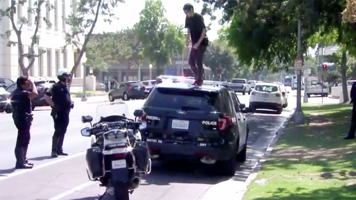 Vor Polizisten: Mann springt auf Polizeiauto herum