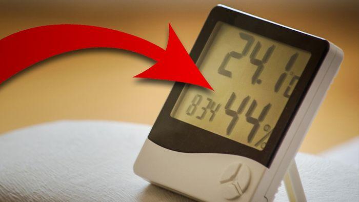 Mit einfachen Tricks könnt Ihr die ideale Luftfeuchtigkeit in Räumen schaffen.
