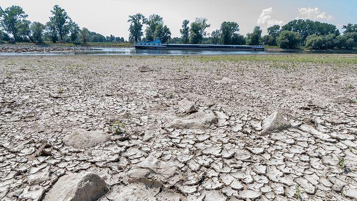Das Jahr 2018 könnte das trockenste Jahr in Deutschland seit Beginn der Wetteraufzeichnung werden.