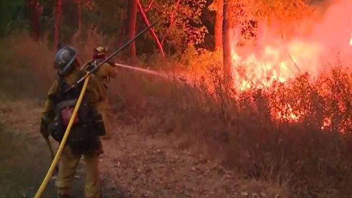Notstand in Kalifornien: Waldbrände treffen Promi-Ort Malibu