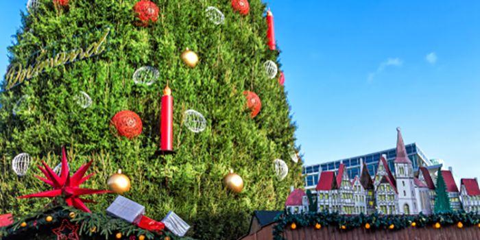 Dortmund Weihnachtsbaum.Weihnachtsbäume Steht In Dortmund Der Größte Weihnachtsbaum Der