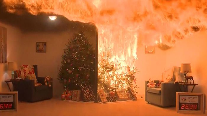 Ausgetrockneter Christbaum in Flammen