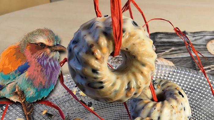 Vögeln helfen: Futterring selber basteln