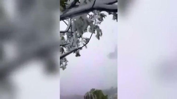 Große Überraschung: Schnee auf Hawaii