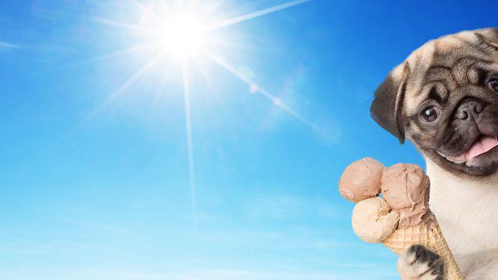 16-Tage-Trend: Modellausraster! Sommerwärme Anfang April?