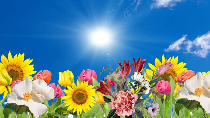 16-Tage-Trend: Sonnenglanz bis Mai?