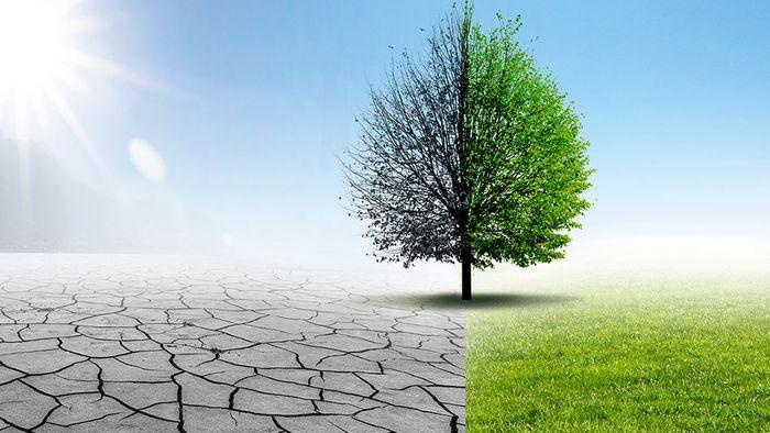 Sommerprognose 2019: Keine ungetrübte Freude