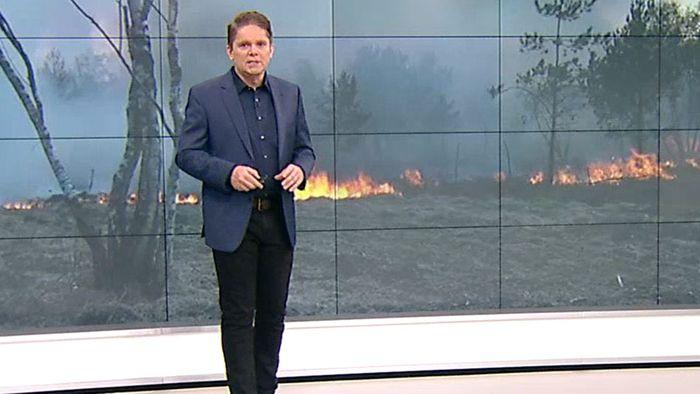 Trockenheit führt zu Waldbränden: Wetterumstellung in Sicht