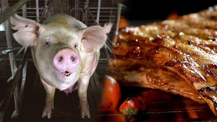 Schweinefleisch wird in Deutschland wohl teurer werden.