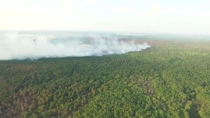 Waldbrände in Brandenburg: Lage weiterhin ernst