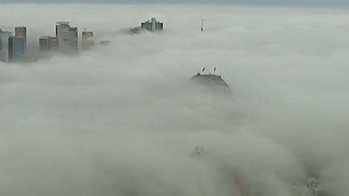 Faszinierend: Sydney verschwindet im Nebel