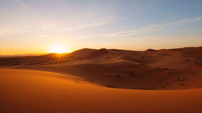Sahara-Temperaturen in Deutschland: Das wird heftig
