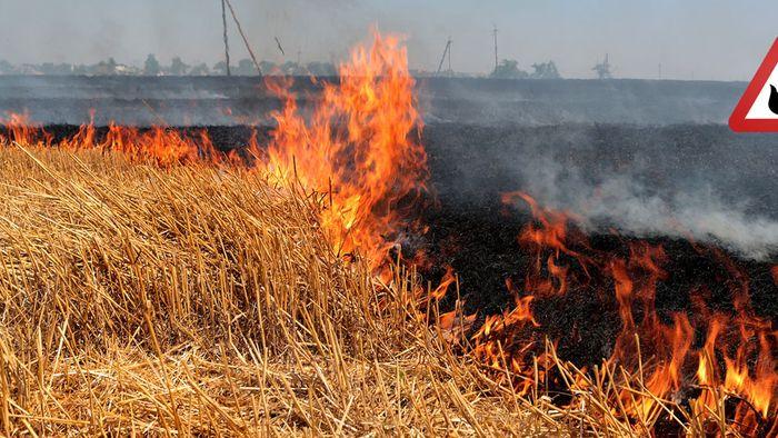 Rekordhitze, Brände, Fluten: Extremwetter hat Europa im Griff