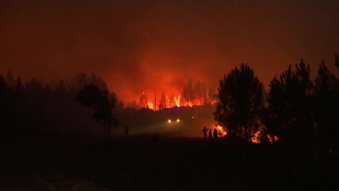 Verletzte in Portugal: Feuerwehr kämpft gegen massive Waldbrände