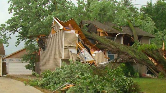 Baum kracht im Sturm auf Haus: Familie durch Zufall gerettet