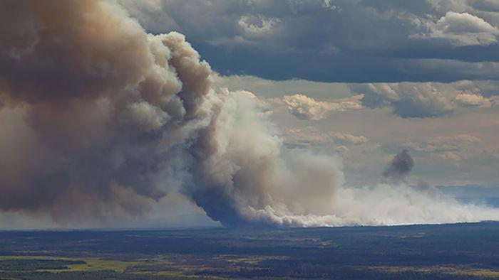 Arktis in Not: Darum brennt es jetzt häufiger