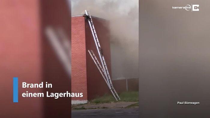 Brand in Lagerhaus: Waschbären flüchten über Feuerwehrleiter